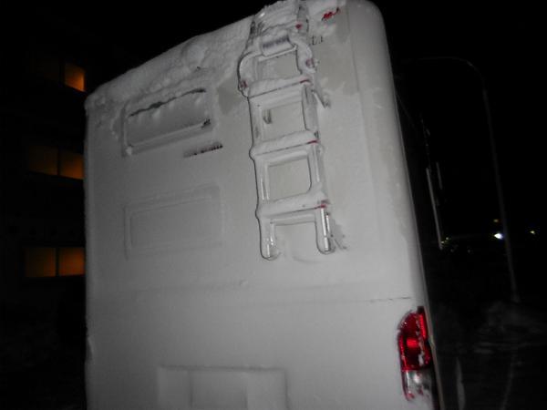 雪まみれのセレンゲティ